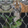 Stainless Steel Rope Cable Woven Mesh Animal Zoo Fencing Wire Mesh