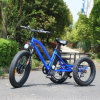 Fat Tire Electric Tricycle with Lithium Battery