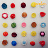 Fashion Garment Accessories/Plastic Buttons/CE Approved