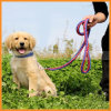 Large Dog Durable Nylon Slip Leash with Collar