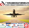 Fast Logistics Shipping From Shenzhen to Dubai by Air
