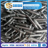 Manufacture 99.95% High Pure Molybdenum Screw & Nut
