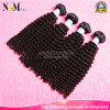 No Chemical Hair Dye Processed Natural Virgin Hair 100% Brizilian Human Curly Hair