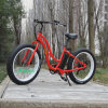 Fat Electric Mountian Bike Fat E-Bike with 750W