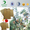 Water Proof Kraft Paper Apple Pear Banana Fruit Plant Nursery Bags for Proection