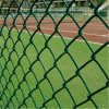 75*75mm PVC Coated Chain Link Fence