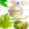 Natural Ratio Extract Pawpaw Powder