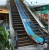 Indoor Types Self-Starting Escalator Price