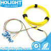 Optical Fiber 12 Core LC to LC Fiber Optic Patch Cord Cable