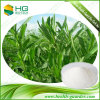 Stevia Extract Natural Sweeteners Steviosides Plant Extracts