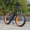 48V Fat Tire 500W Mountain Electric Bike