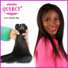 Quercy Nice Quality Human Hair Extensions / Straight Weave Bundles Virgin Mongolian Hair