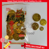 Gold Coin Chocolate Candy