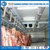 Fast Frozen Chicken Freezer Cold Storage Room