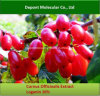 Cornus Officinalis Extract, Loganin, Morroniside