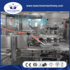 Dcgf24-24-8 Automatic Rotary Type Bottled Carbonated Energy Drink Filling Machine