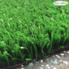 Field Green Artificial Plant, Tennis Grass
