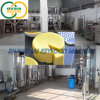 Fully-Automatic Cheese Forming Machinery for Mozzarella Cheese