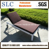 Rattan Chaise Lounge/Lounge Chair/Lounge (SC-B8867)