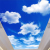 Blue Sky/White Clouds LED Panel Light for Indoor Design