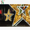 Commercial Christmas Outdoor Street Decorations 3D Metal Frame Star Lights