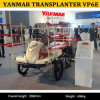 China Hot Sale Products Vp6e 2zgz-6 Riding Rice Transplanter