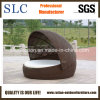 Rattan Daybed /Round Rattan Lounge/ Sunbed Lounge (SC-B6020)