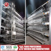 Chicken Cage China Supplier Laying Hen Equipment for Egg Poultry Farm