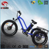500W 3 Wheel Electric Scooter Fat Tire Tricycle with Lsd
