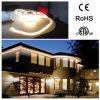 LED Light Strip 5050 for Hotel Outside Decorations