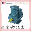 Cast Iron 2p 315kw Yb3-355L2-2 Explosion-Proof AC Electric Motor