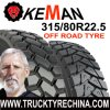 295/80r22.5 off Road Pattern Truck Tire