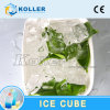 Cube Ice Machine with Packing System 2tons/Day