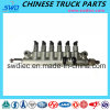 Common Rail for Sinotruk HOWO Truck Spare Part (R61540080016)
