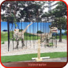 Dinosaur in Cage Fun City Velociraptor Dinosaur for Sale