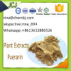 Purity with 99% Puerarin CAS 3681-99-0 for Traditional Chinese Medicine