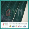 Hot-Dipped Galvanized Rust Proof Welded Wire Mesh Rolls
