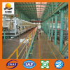 SPCC/DC01/St12 Cold Rolled Steel Coil Galvanized Coil
