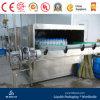 Bottle Warmer for Carbonated Drink Line
