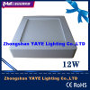 Yaye CE/RoHS 6W/12W/18W Surface Mounted LED Panel Light with 2/3 Years Warranty