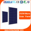 High Efficiency 300W 30V (1650*992*40mm) Solar Power Mono & Poly Solar Panel