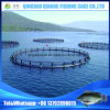 Anti-Storm China Hot Selling Popular Fish Farming Floating Cage Frame