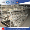 Cold Galvanization Farm Machinery Chicken Broiler Cage for Sale