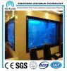 Custom-Made Sea Water Aquarium