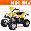 50cc - 110cc Kids Quad Bike