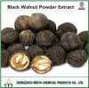Hot Sale Black Walnut Powder Extract to Prevent Artherosclerosis