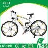 28 Inch 700c Hidden Battery Mountain Electric Dirt Bike/Sport E-Bike/Motorized Bike 48V 750W with Magnesium Integrated Ebike