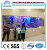 Customized Transparent UV PMMA Sheet Aquarium of Aquarium Project
