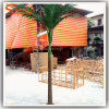 Artificial Outdoor Areca Palm Mini Plastic Palm Trees