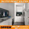 Oppein Modular Australia Project Built-in Lacquer Wooden Kitchen Cabinet (OP14-L02)